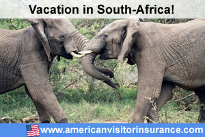 Travel insurance for Addo Elephant Park