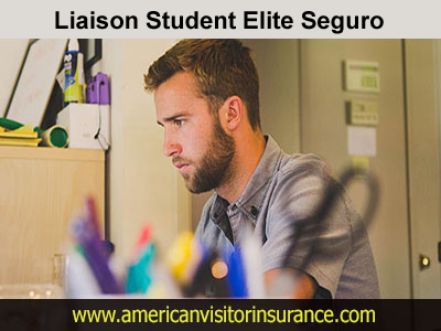 Liaison Student Elite Insurance