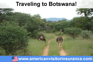 Travel insurance for Central Kalahari Game Reserve