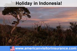 Travel insurance for Gunung Leuser National Park