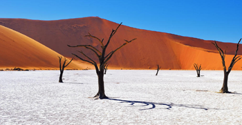 Travel insurance for Namibia